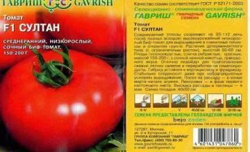Собираем знатные урожаи вплоть до первых холодов — томат зазимок f1: описание и характеристика сорта