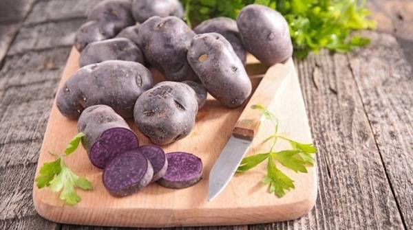Фиолетовый картофель: 5 сортов и 9 советов по выращиванию и хранению