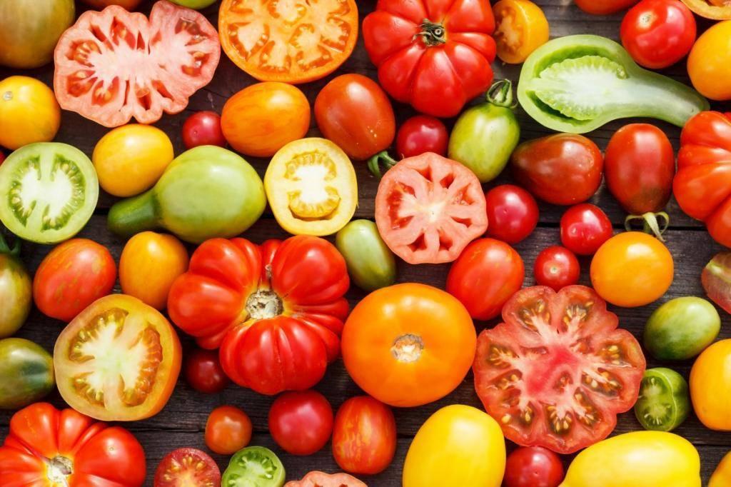 Характеристики гибрида томатов «оля f1»: сроки созревания, урожайность, вкус