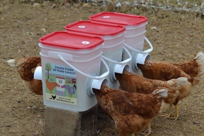 Делаем кормушку для кур из канализационной, полипропиленовой, пластиковой трубы!