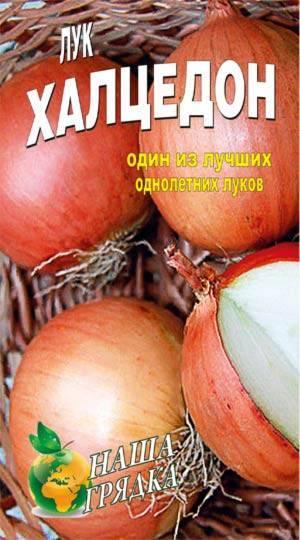 Описание сорта лука халцедон — как поднять урожайность