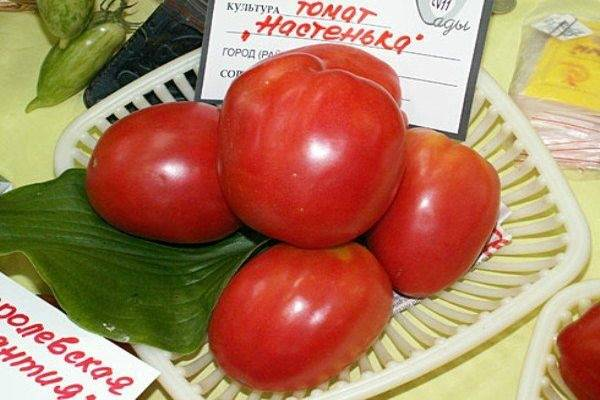 часовое славянка томат отзывы и фото вещи, которых маленькой