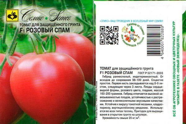 Томат супермодель характеристика и описание сорта урожайность с фото