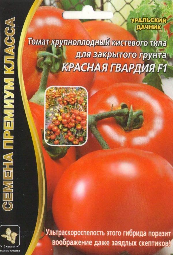 Томат фунтик: характеристика и описание орта, его урожайность с фото