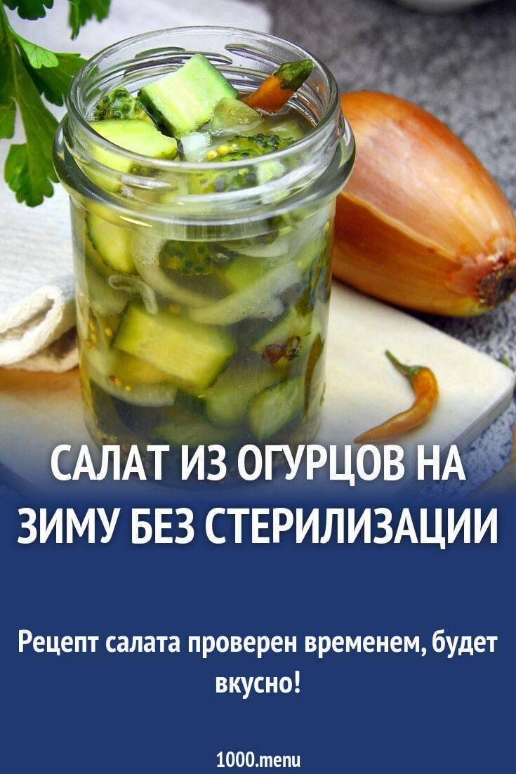 Консервирование огурцов на зиму. очень вкусные рецепты в литровых банках