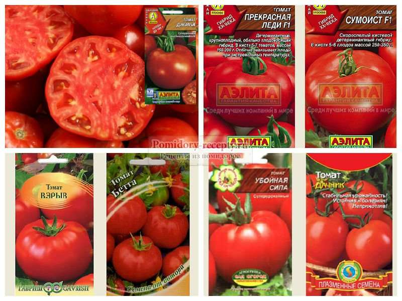 Лучшие сорта томатов для подмосковья.