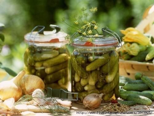 Как консервировать огурцы с водкой. рецепты консервированных огурцов злодейских с водкой на зиму