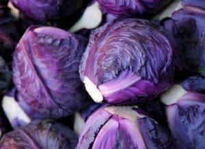 Декоративная капуста: сортовое разнообразие и секреты выращивания