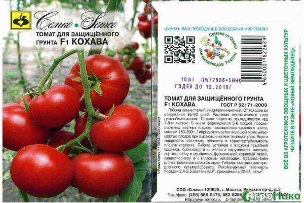 Описание томата вожак f1, характеристика сорта и выращивание