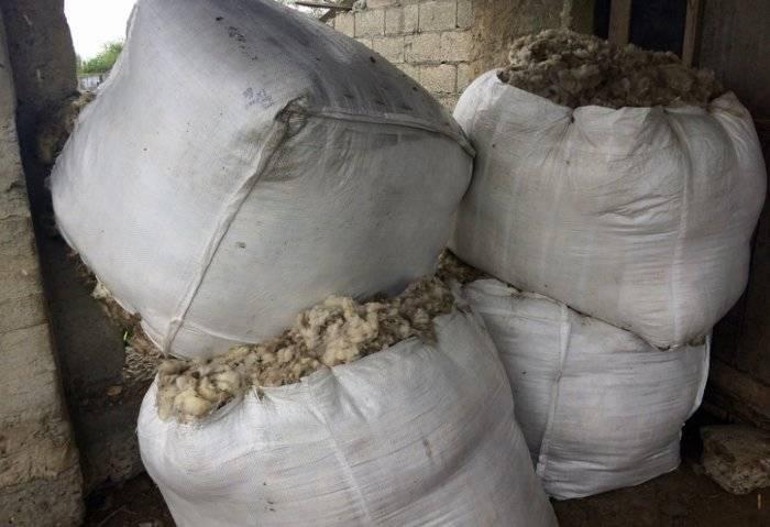 Сроки и техника стрижки овец, рекомендации по стрижке барана: рассмотрим все нюансы