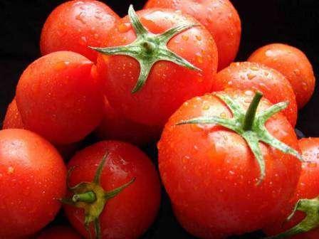 Томат яки f1: характеристика и описание сорта, урожайность с фото