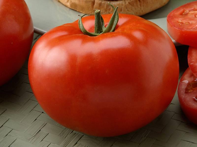 Характеристика и описание томата Биф, что это за сорт, его урожайность