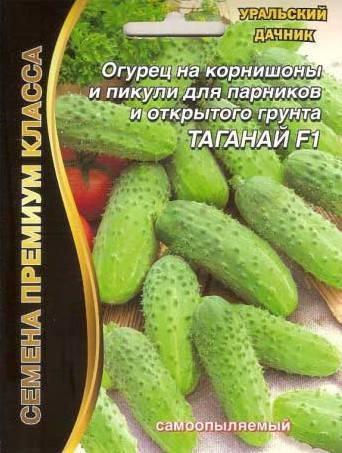 Огурец «мазай f1»: популярный партенокарпический гибрид корнишонного типа