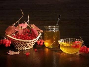 Настойка калины: полезные и лечебные свойства, рецепты приготовления