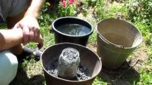 Древесная зола как удобрение: правила применения старой доброй подкормки