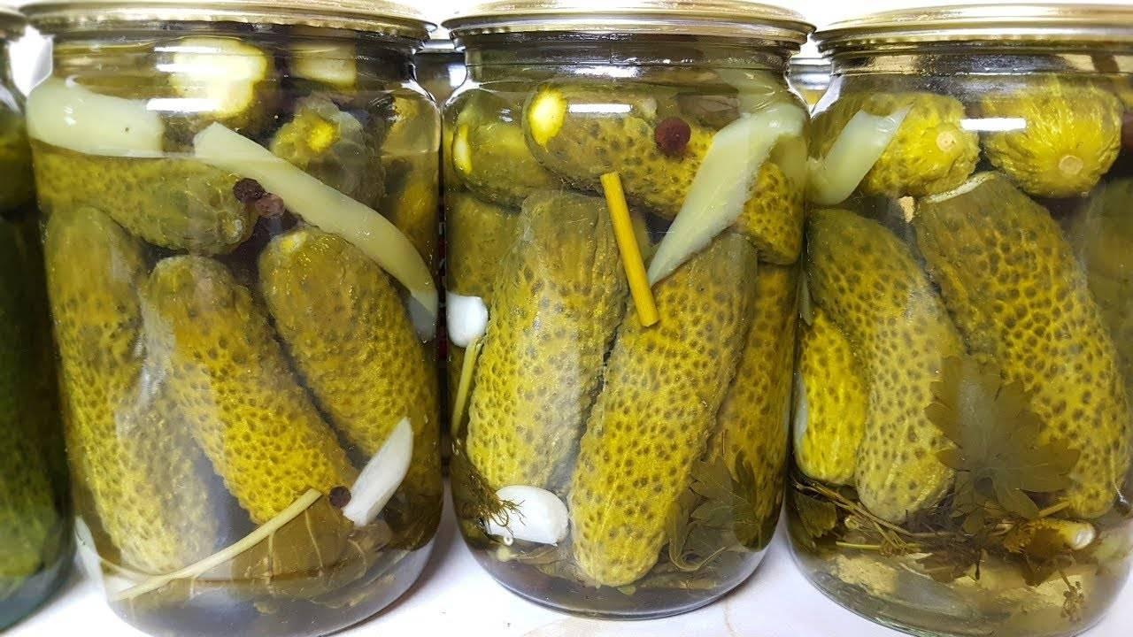 Салаты из огурцов на зиму. 6 вкусных рецептов – пальчики оближешь!