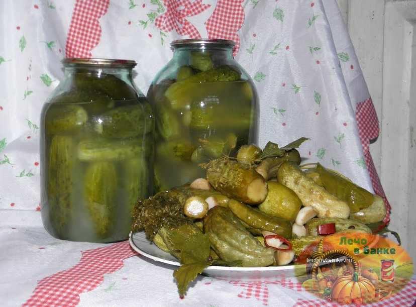 Хранение соленых огурцов в домашних условиях