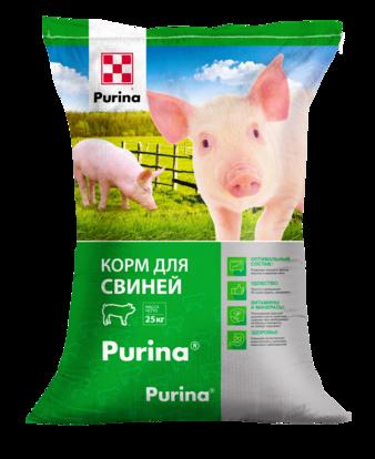 Правила кормления свиней – таблица по нормам и составу