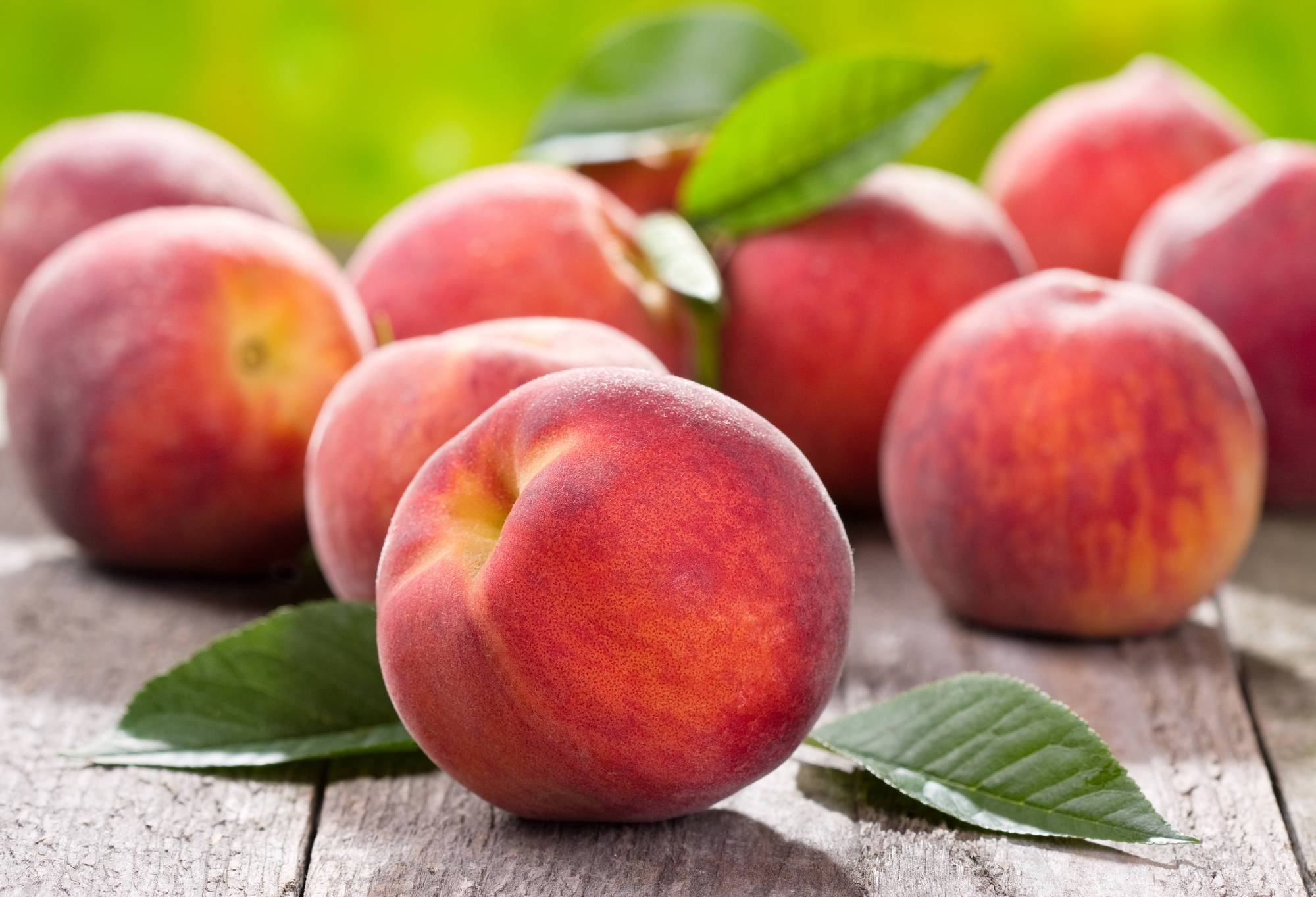Польза и вред персиков для здоровья, состав, правила выбора и свойства