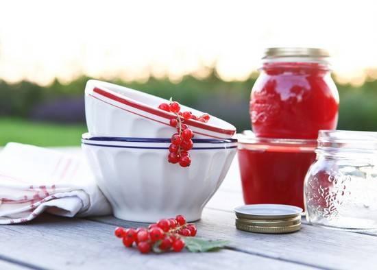 5 рецептов приготовления перетертой красной смородины на зиму без варки