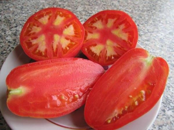 Сорт томата «антоновка медовая»: описание, характеристика, посев на рассаду, подкормка, урожайность, фото, видео и самые распространенные болезни томатов