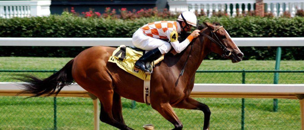 Скорость, развиваемая лошадью: средняя и максимальная
