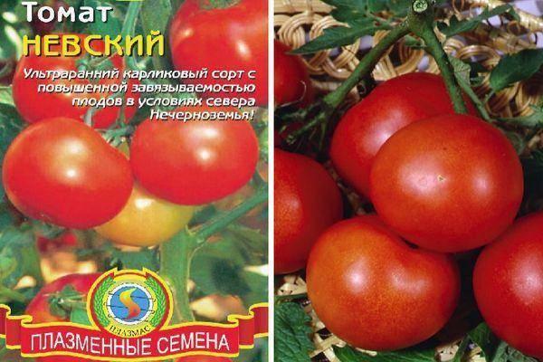 Ценность томата санька
