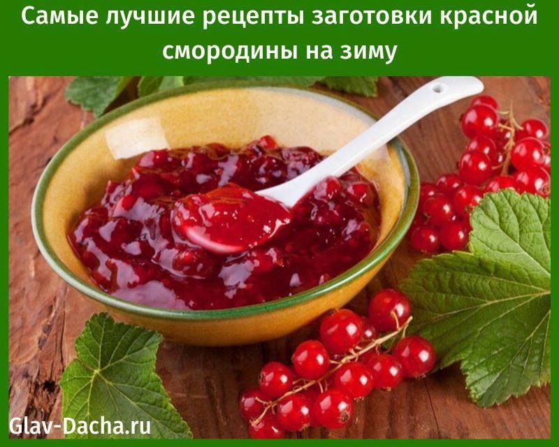 Рецепты заготовок из красной смородины на зиму