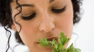 Польза и вред петрушки при беременности