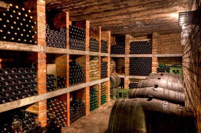 Технология приготовления вина из рябины: 7 лучших рецептов с фото