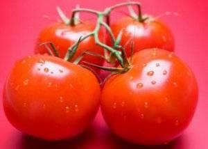 Сорт (гибрид) помидоров «верлиока f1»: описание, характеристика, урожайность, фото и видео