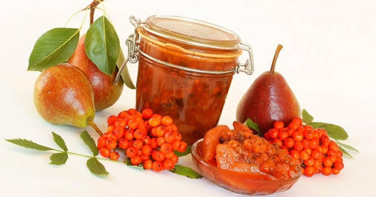 Топ 16 простых рецептов варенья из красной рябины на зиму в домашних условиях