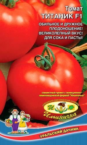 Описание сорта томата успех, характеристика и рекомендации по выращиванию