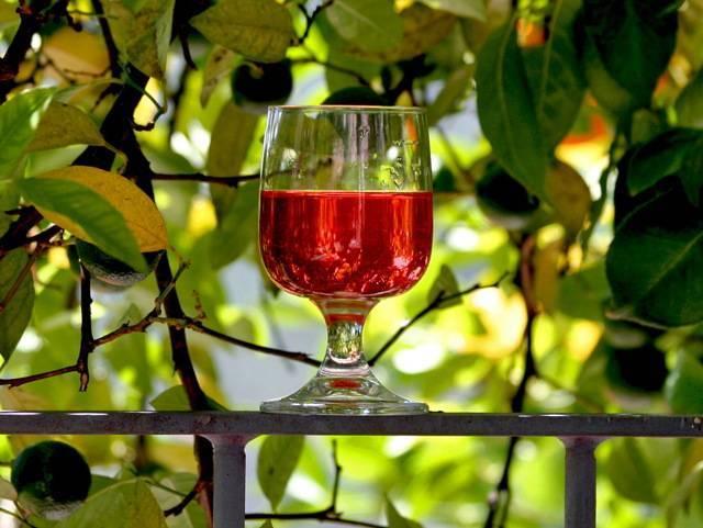 6 простых рецептов, как сделать вино из свежего боярышника в домашних условиях