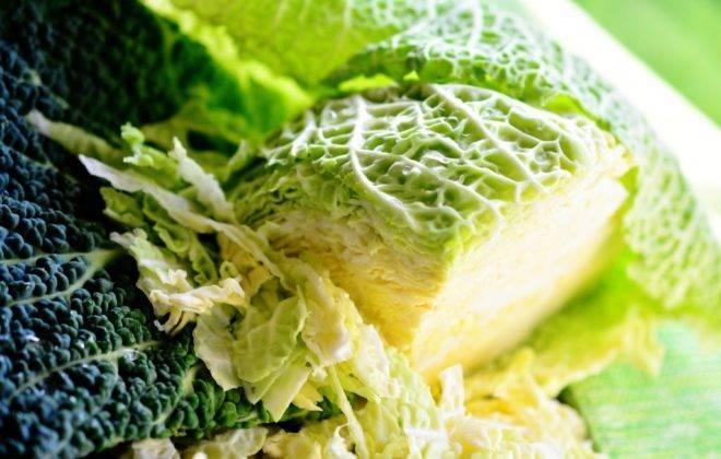 Савойская капуста: рецепты и заготовки, польза и вред от употребления