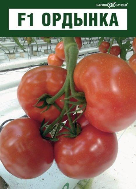 Обзор лучших ранних сортов томатов для теплиц с названиями