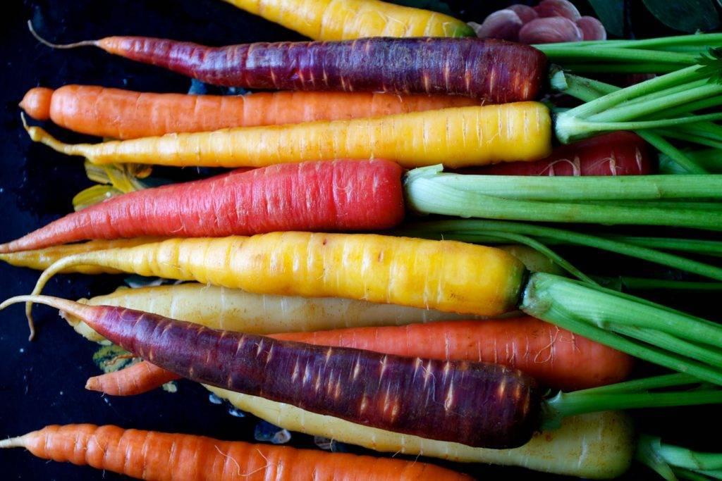 Черная морковь: лучшие сорта и правила выращивания и ухода