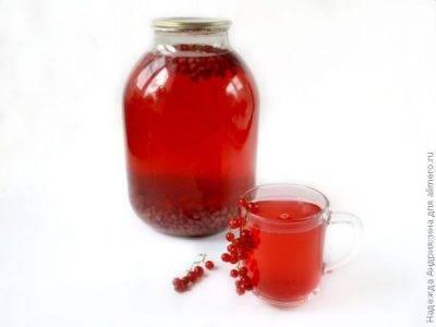 Компот из красной черемухи на зиму: топ 10 рецептов приготовления с фото и видео
