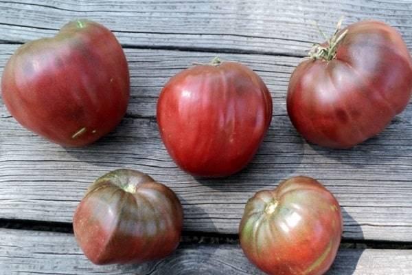 Описание томата сердце ашхабада, фото плодов, отзывы