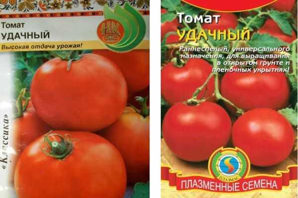 Описание сорта помидора Воевода, его выращивание и уход