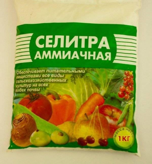 Кальциевая селитра для томатов: инструкция по применению