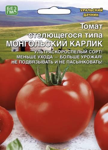 Сорт томата толстушка: фото и описание