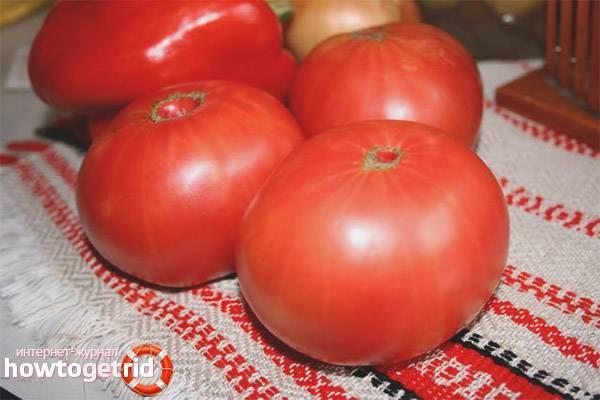 Сорт томата бравый генерал