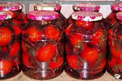 Рецепты маринования помидоров с базиликом на зиму