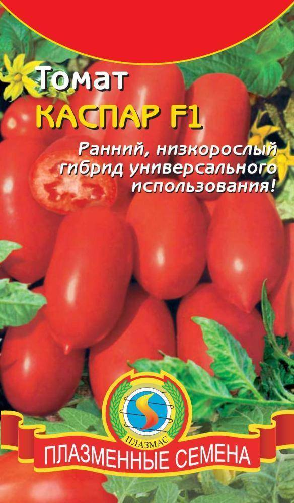 Каспар томат отзывы урожайность. томат каспар: отзывы, фото, урожайность