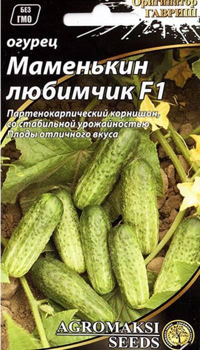 Описание сорта огурцов Маменькин любимчик, особенности выращивания и ухода