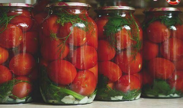 Почему лопаются помидоры при засолке и как решить проблему