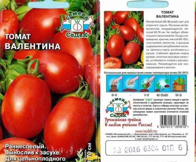 Характеристика и описание сорта томата яблонька россии, его урожайность