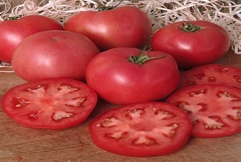 Описание сорта томата Жирдяй, его посадка и уход