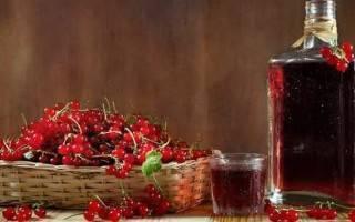 Лучшие рецепты приготовления на зиму красной рябины